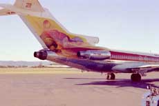 TAA's Ayres Rock painted 727